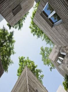 Nhà cho cây